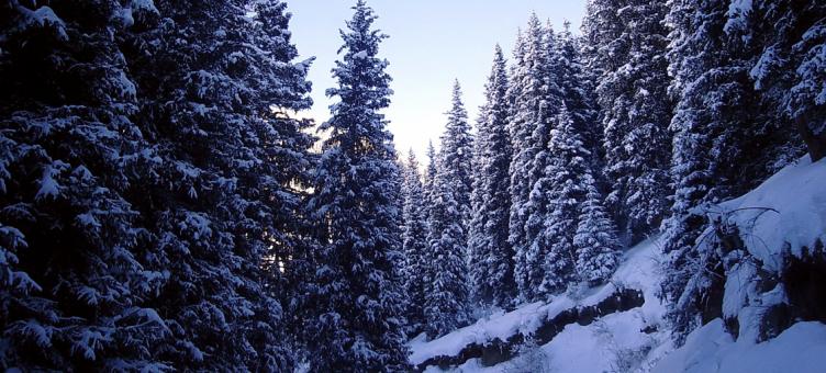 Main image ofConte de fées d'hiver au Kirghizstan