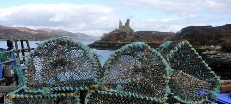 Main image ofCircuit côte Ouest de l'Écosse