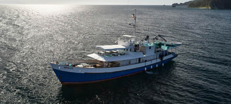 Main image ofCroisière à Tubbataha Reef en Avril aux Philippines