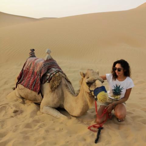 Main image ofLaissez-vous emporter par la magie des Émirats Arabes Unis, Dubaï et Abu Dhabi!