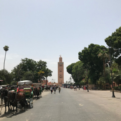 Main image ofMarrakesh : A week-end in the red city