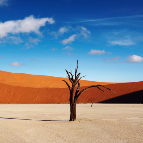 Main image ofLa Namibie selon vos envies