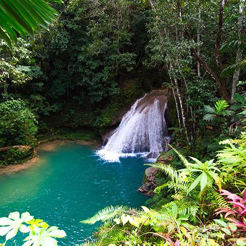 Main image ofJamaïque : Lagons & Musique