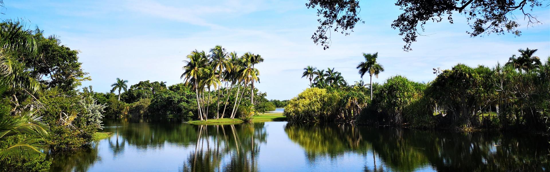 Main image ofLa Floride du Sud