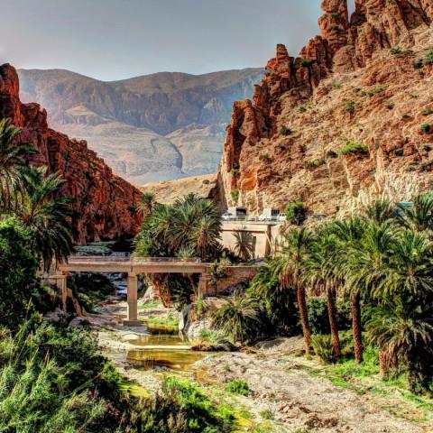Destination image of Algérie