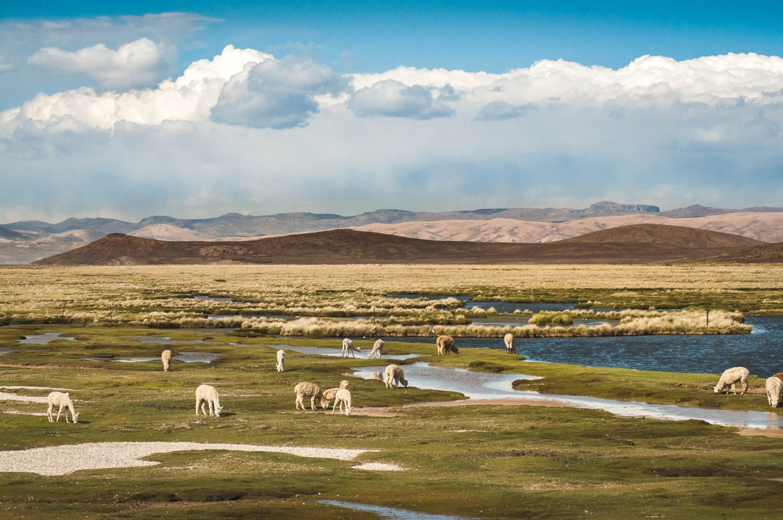 Main image ofSéjour culturel et sportif dans la Vallée Sacrée des Incas (en autonomie)