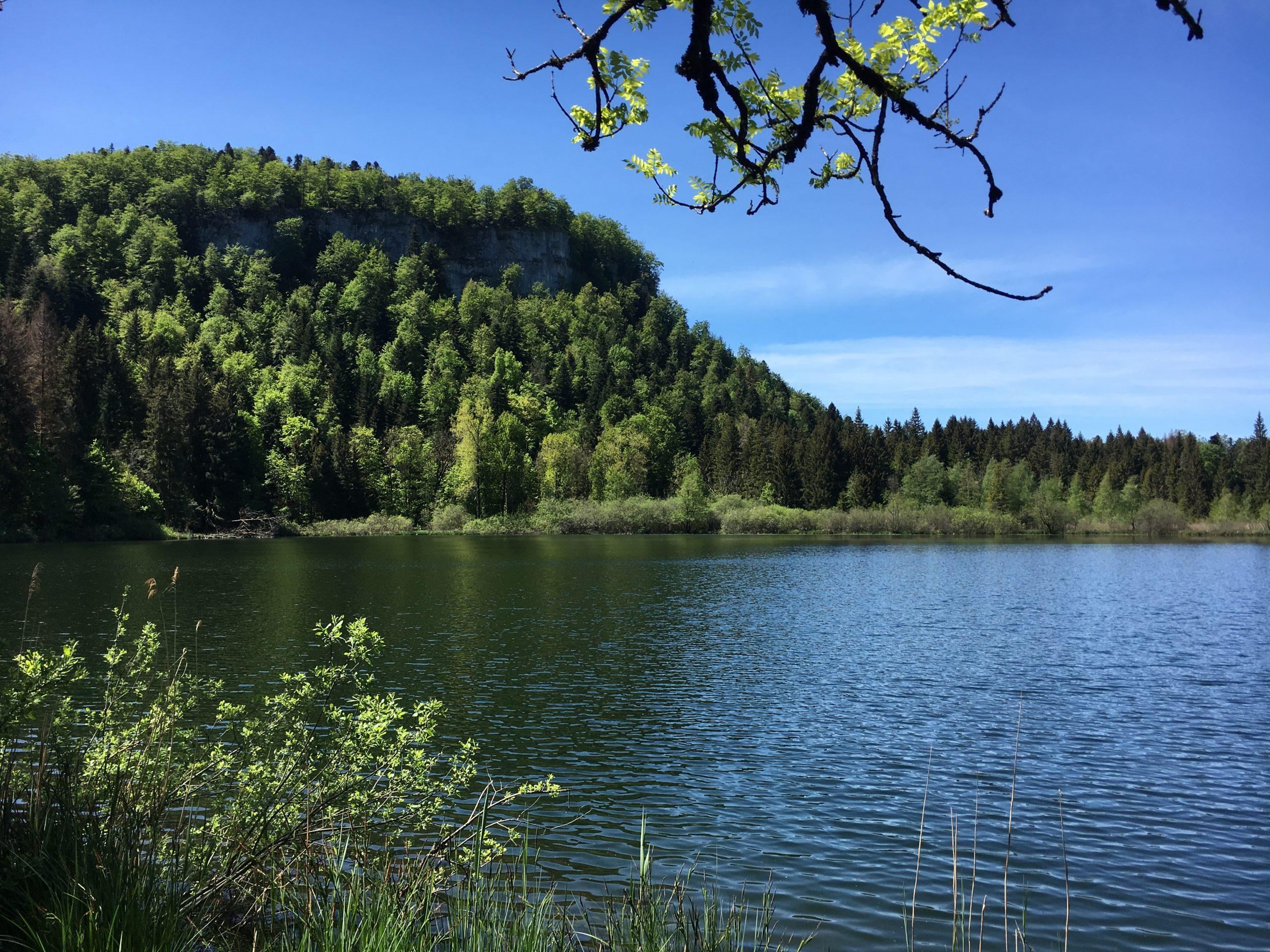 Main image ofEscapade dans le Haut Jura : au pays des lacs !