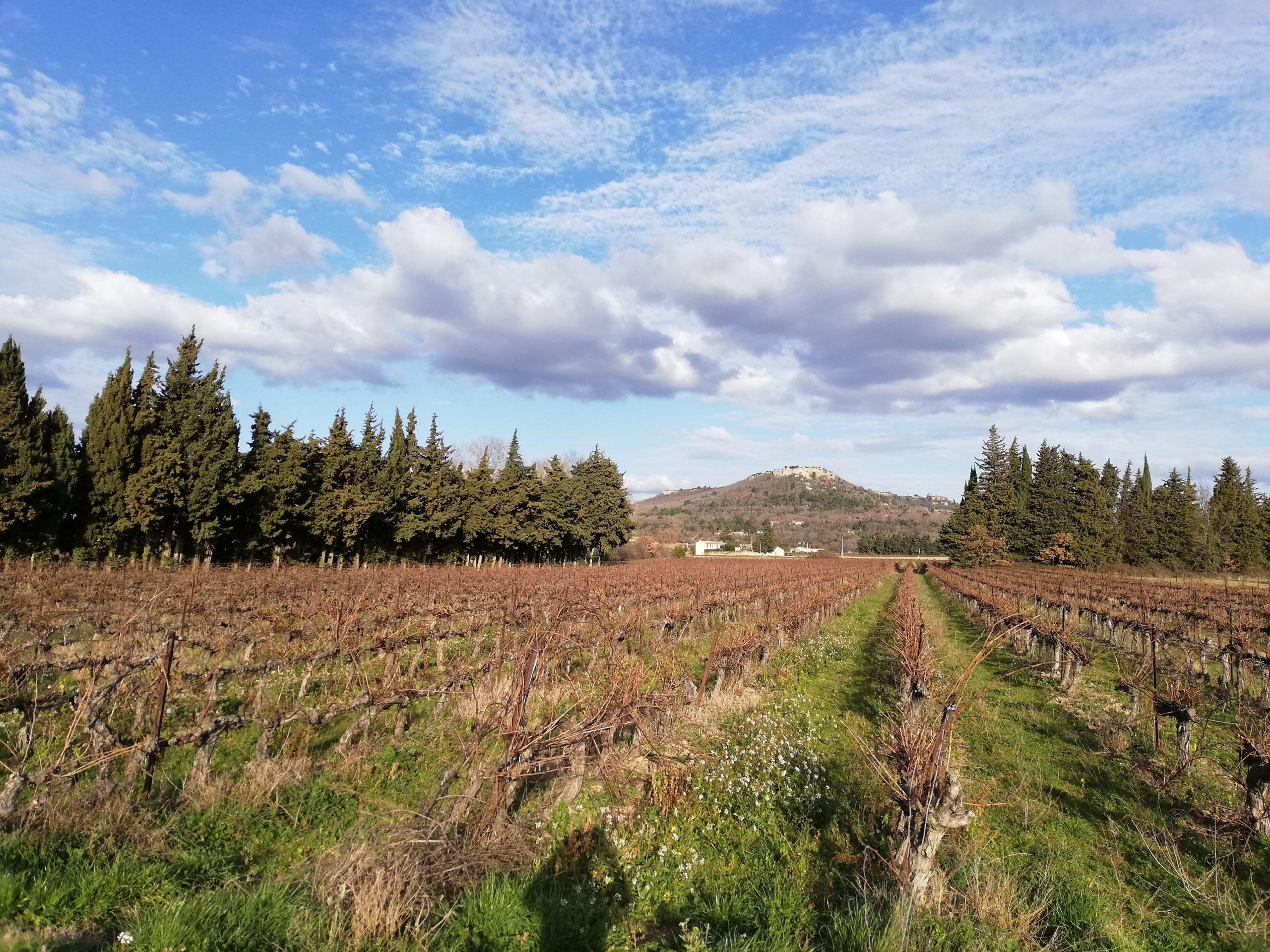 Main image ofVoyage sur mesure - Escapade au cœur de la Provence