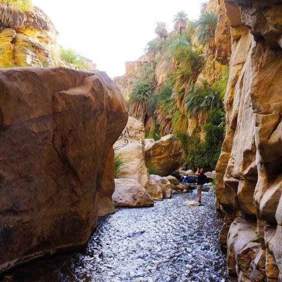 Main image ofLa Jordanie : Nature & Aventure et Canyoning