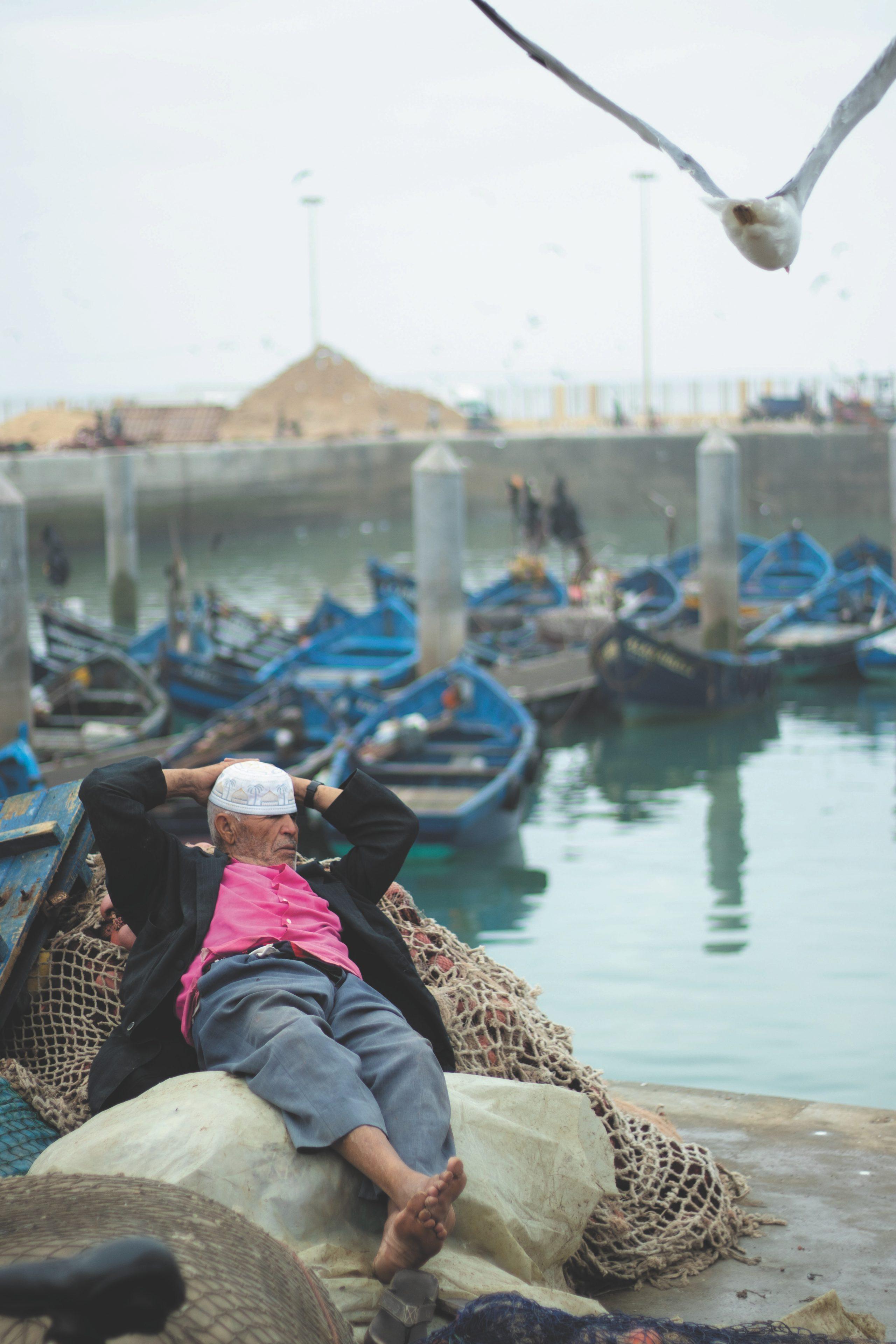 Main image ofLa ville portuaire d'Essaouira