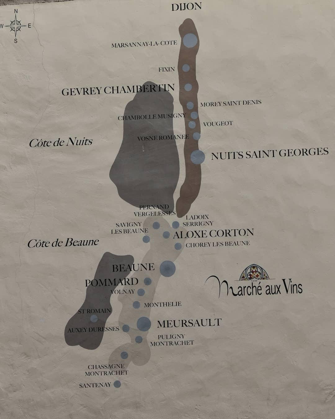 Main image ofVin et gastronomie en bourgogne