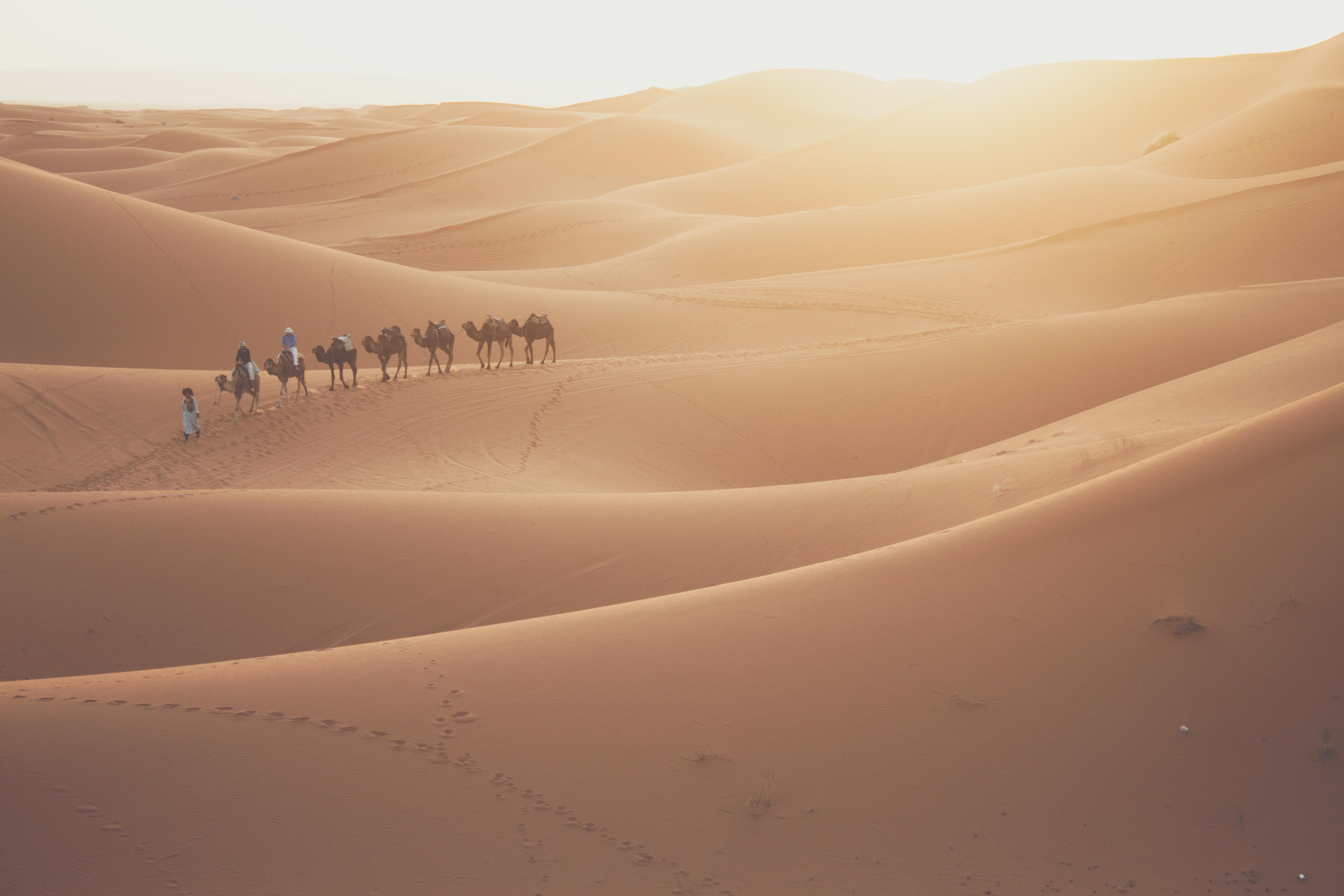 Destination image of Maroc