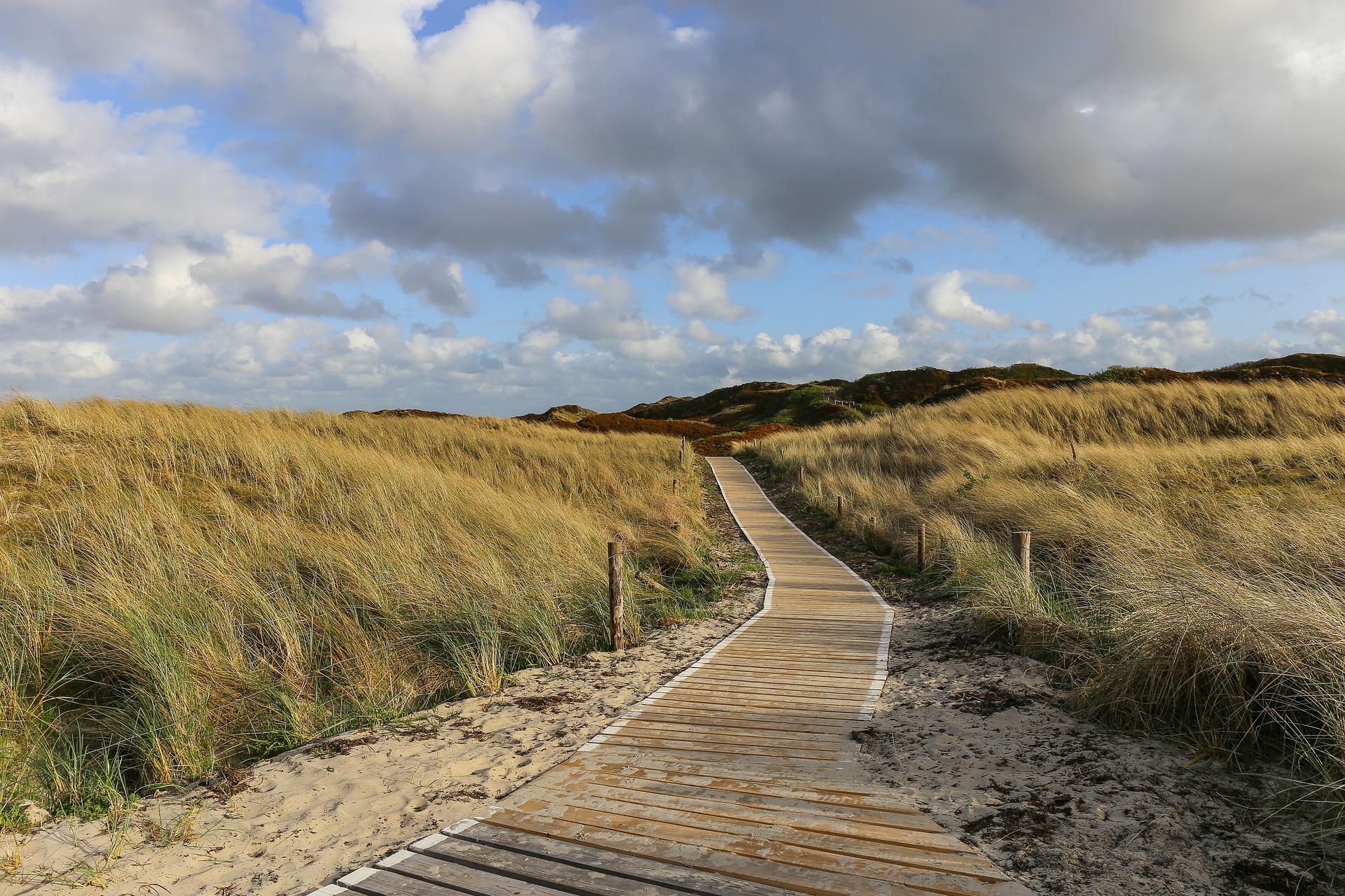 Main image of article: Le Nord des Pays-Bas, un avant-goût de Scandinavie.