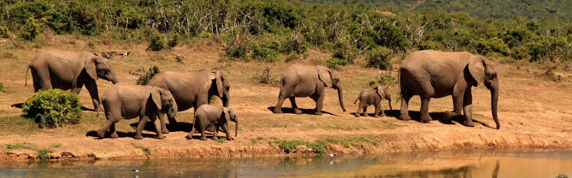 Destination image of Afrique du sud