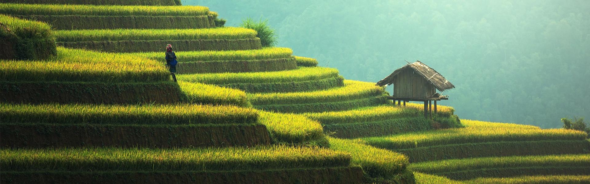 Destination image of Asie du Sud-Est