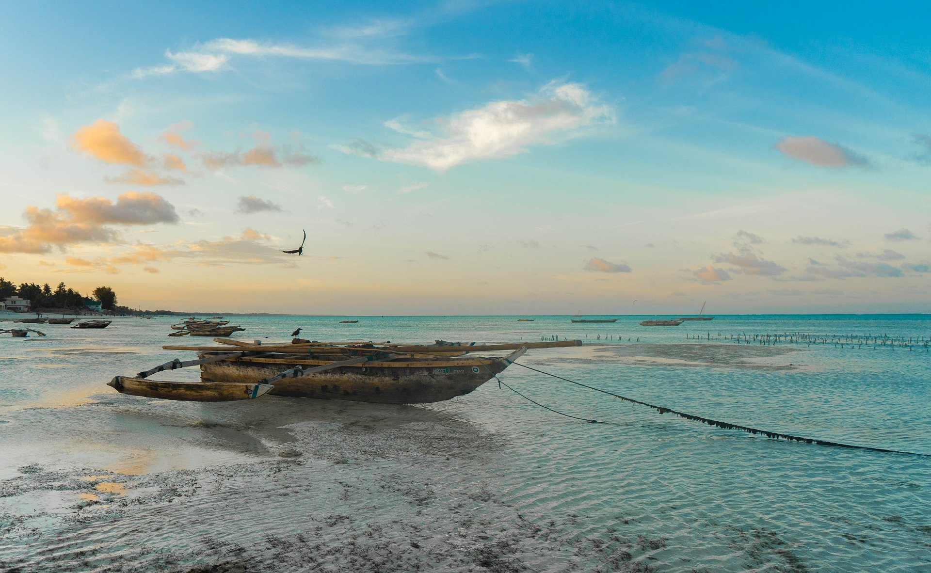 Destination image of Zanzibar