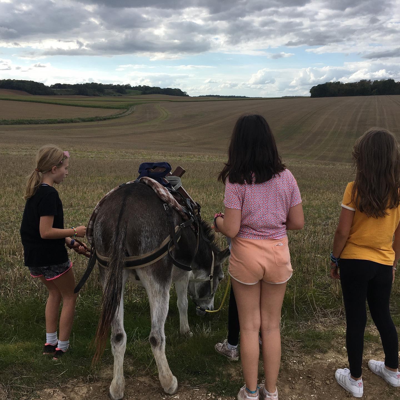 Main image ofMicro-aventure en Ile de France : Randonnée en âne